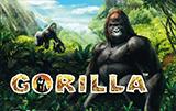 Слот на деньги Gorilla