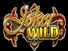 Бездепозитный бонус от Joker Wild